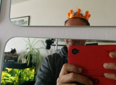 A silly picture of me with a plastic orange crown on, my face is deliberately half obscured